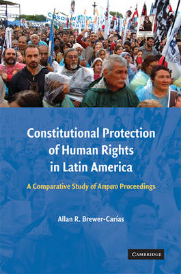 Constitutional Protection of Human Rights in Latin America