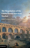 Regulation of the Global Water Services Market