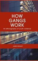 How Gangs Work