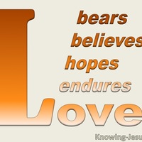 1 corinthians 13 7 love bears all things orange