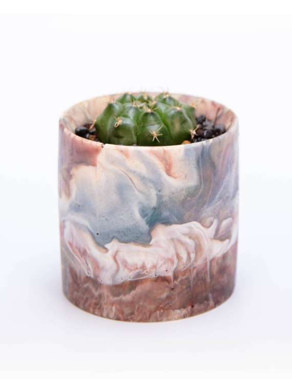 Beige , Blue And White - Artsy Resin Pots With Succulent Or Cactus - Liquid Art