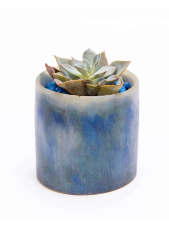 Blue And White Artsy Resin Pots With Succulent Or Cactus - Liquid Art