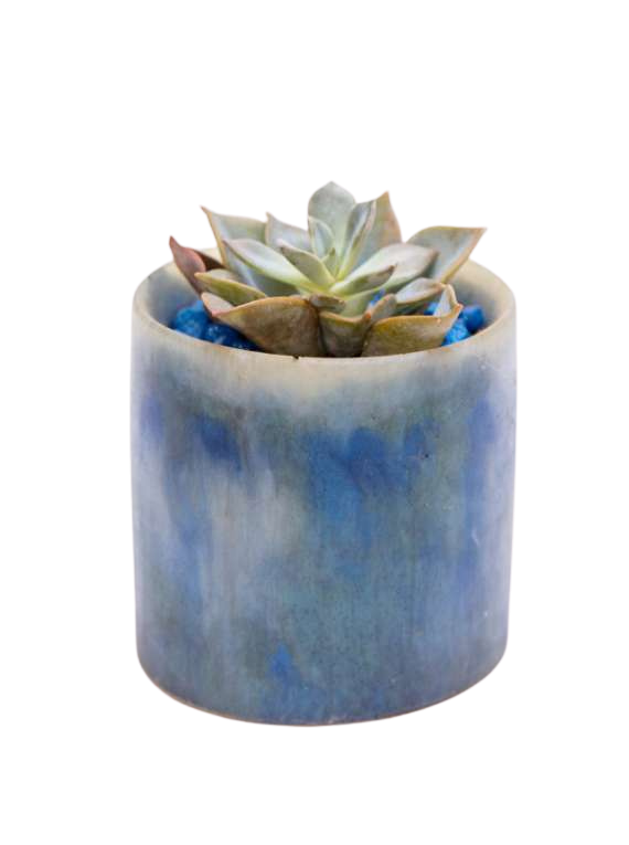 Blue And White Artsy Resin Pots With Succulent Or Cactus - Liquid Art image