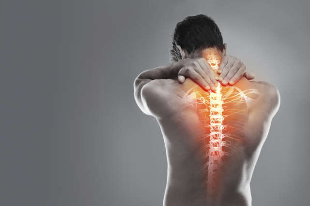 Musculoskeletal iStock 000047635590 Large