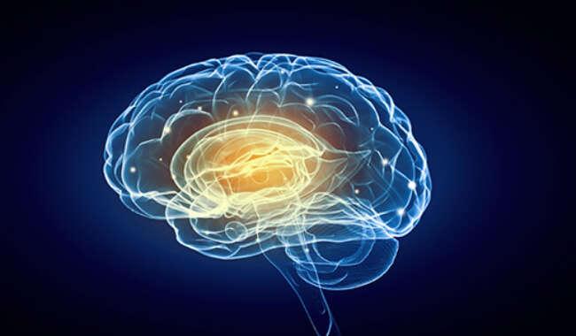 Keys to Neuroscience Excellence – Determination, Preparation, Execution