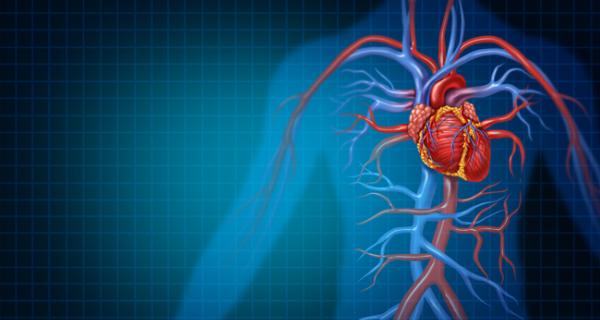 Cardiovascular Technologies To Watch In 2019 Web