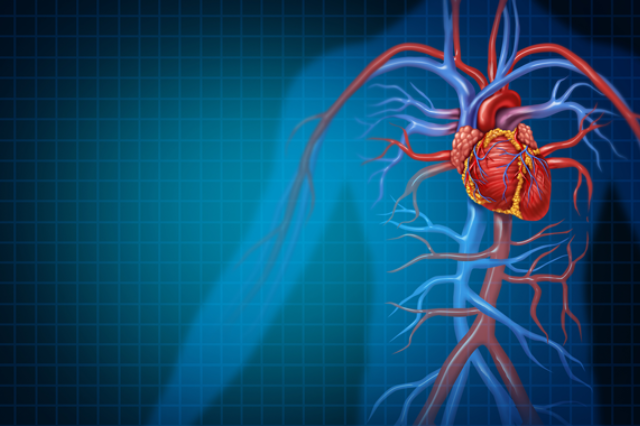 Cardiovascular Technologies To Watch In 2019 Web