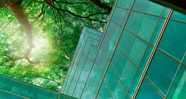 Energy Efficiency Web