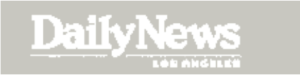 Daily News washed out logo