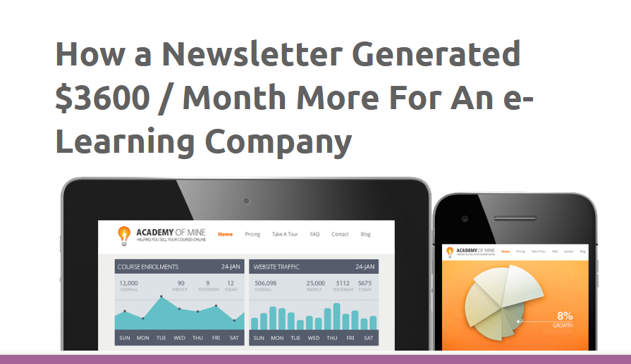 how newsletter email generated revenue