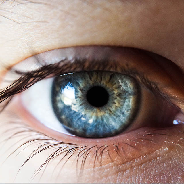 How Can You Find Diseases by Looking at My Eyes?