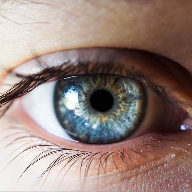 Eye Doctor West Jordan UT