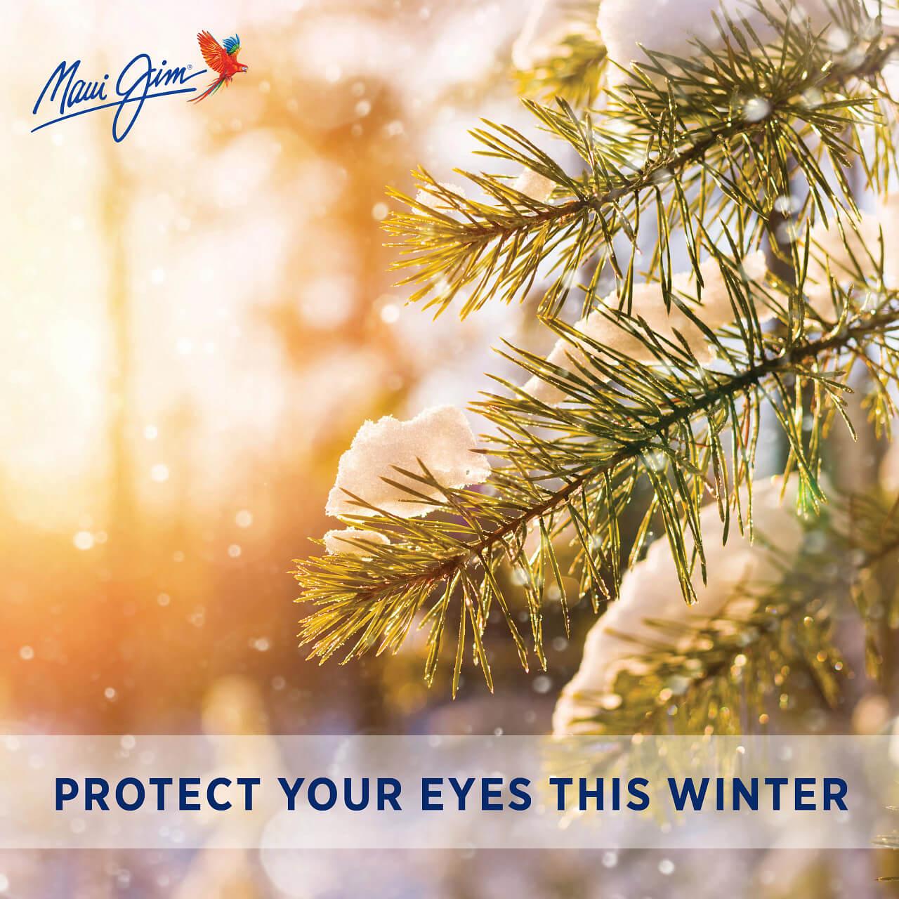 Winter Snow Eye Health 1