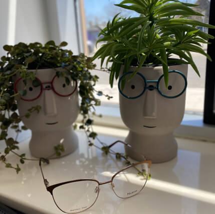 happy clients patient reviews smiling optical pot plants