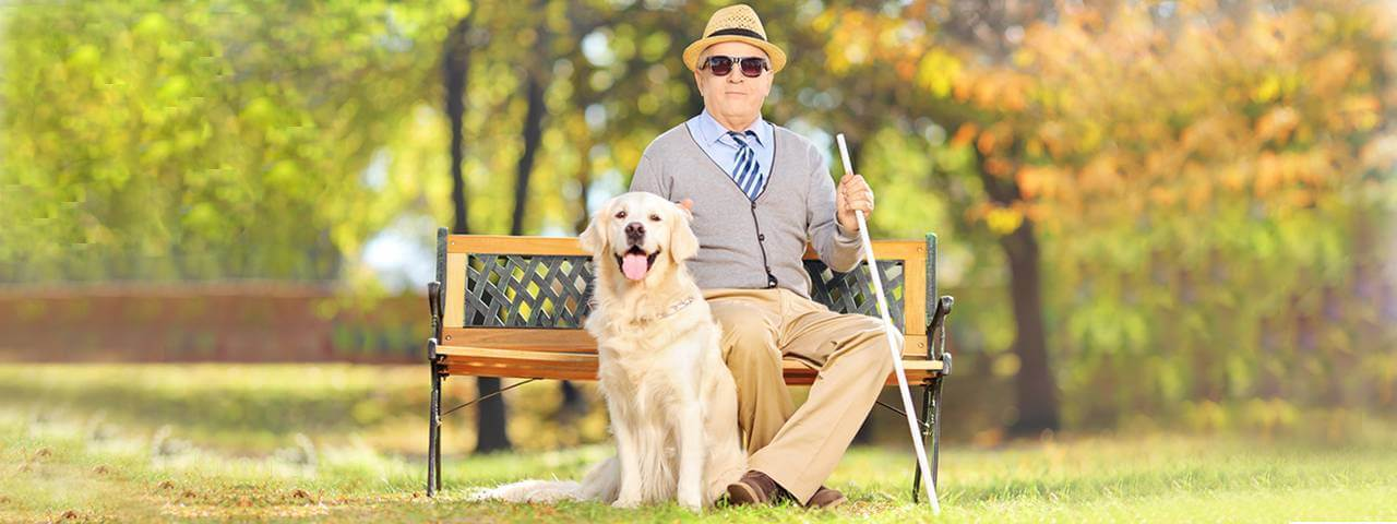 Man blind from glaucoma, with dog