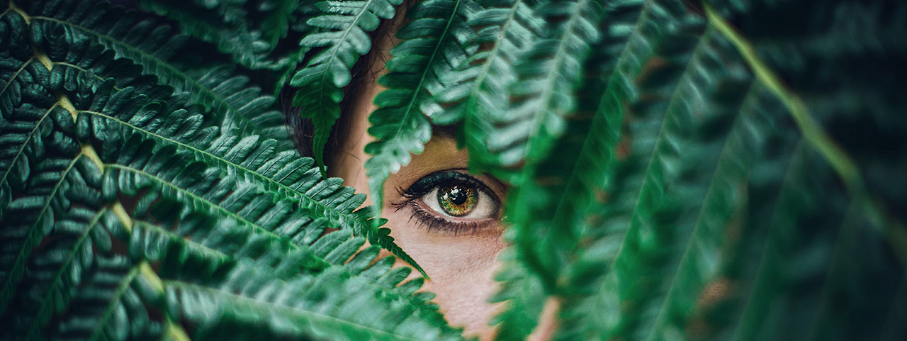 eye peeking from fern 1280x480.jpg