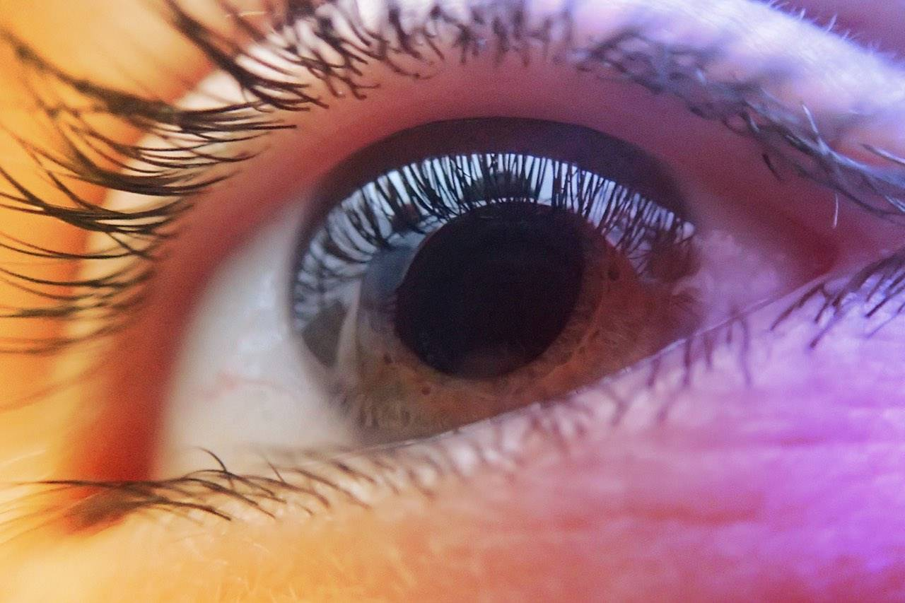 closeup eye 1280×853