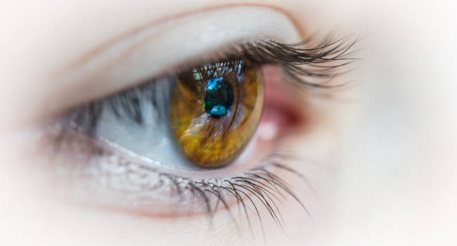 Treatment-from-optometrist-for-Stey-Eyelid-Pain-650x350