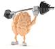 brain trainin 1