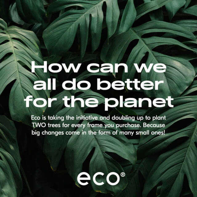 eco sustainable