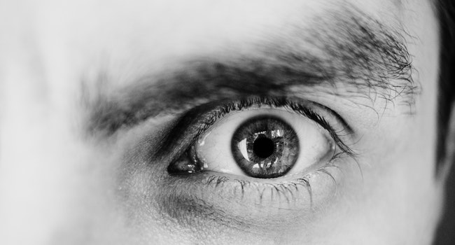 grayscale-photo-of-person-s-left-eye-1122531