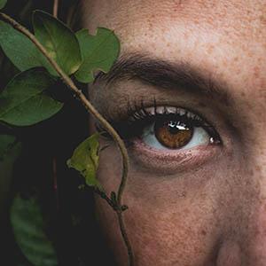 eye leaf dry eyes 1 300px