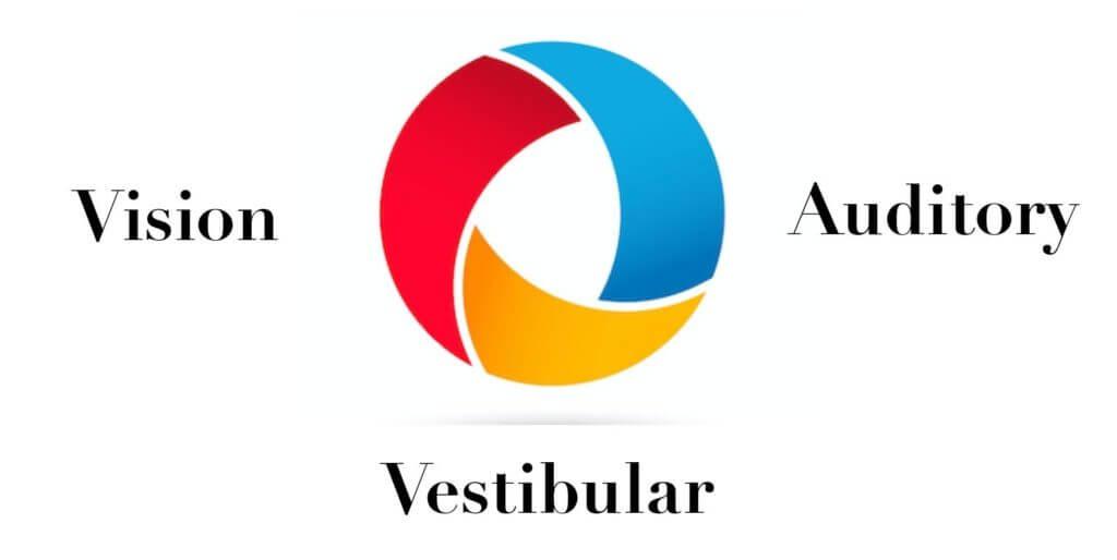 vision auditory vestibular logo