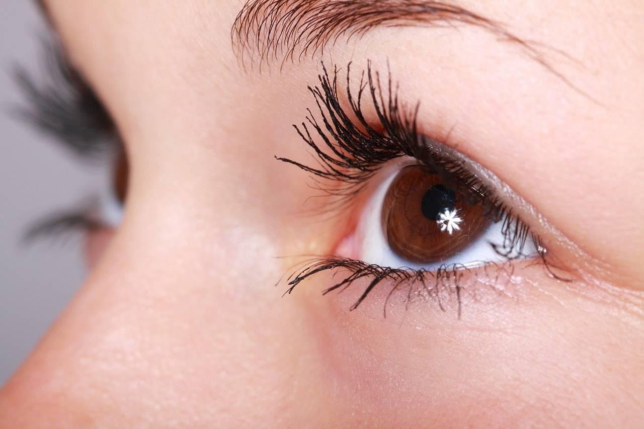 eye brown twinkle close up 1280×853