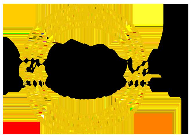 Gold Coast Optometric Vision Performance