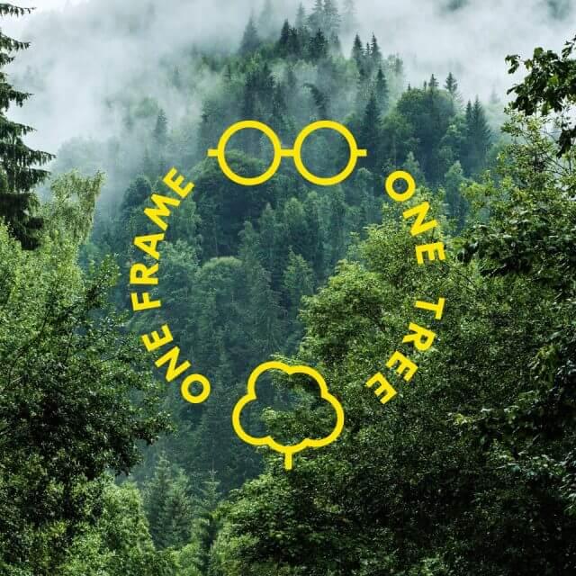 one_frame one_tree_09 640x640