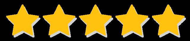 googles 5 star reviews