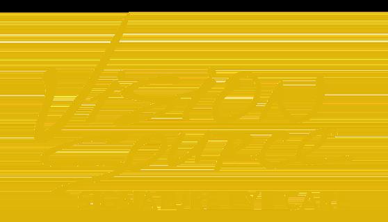 Vision Source Garland