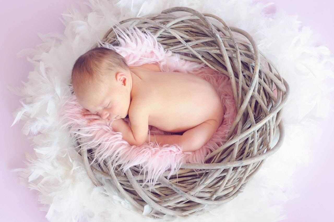 baby sleeping in nest 1280×853