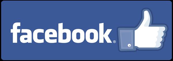 facebook logo stats 2018