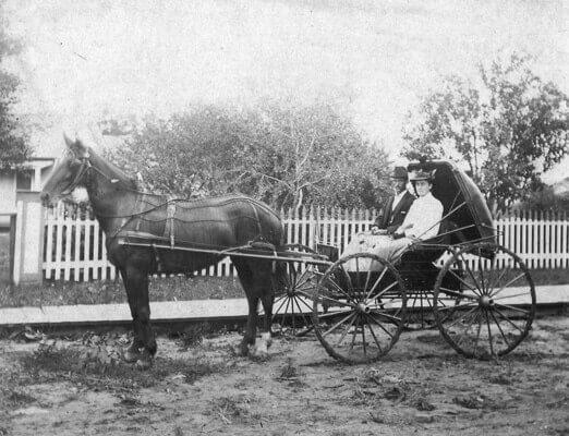 horse carriage transportation.jpg