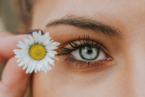 blue-eye-with-daisy-image-asset.jpeg