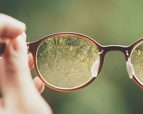 Viewing forest through eyeglasses