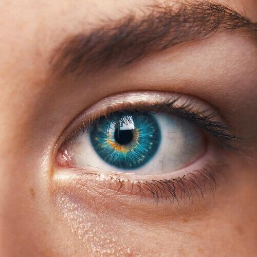 blue eye upclose