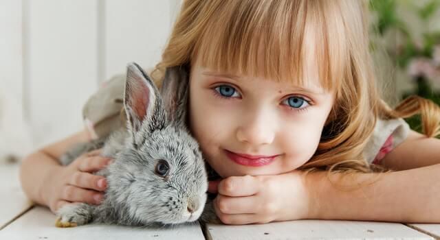 girl-lying-on-white-surface-petting-gray-rabbit-1462634