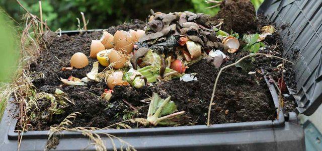 composting img