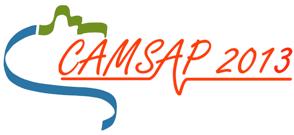 CAMSAP 2013