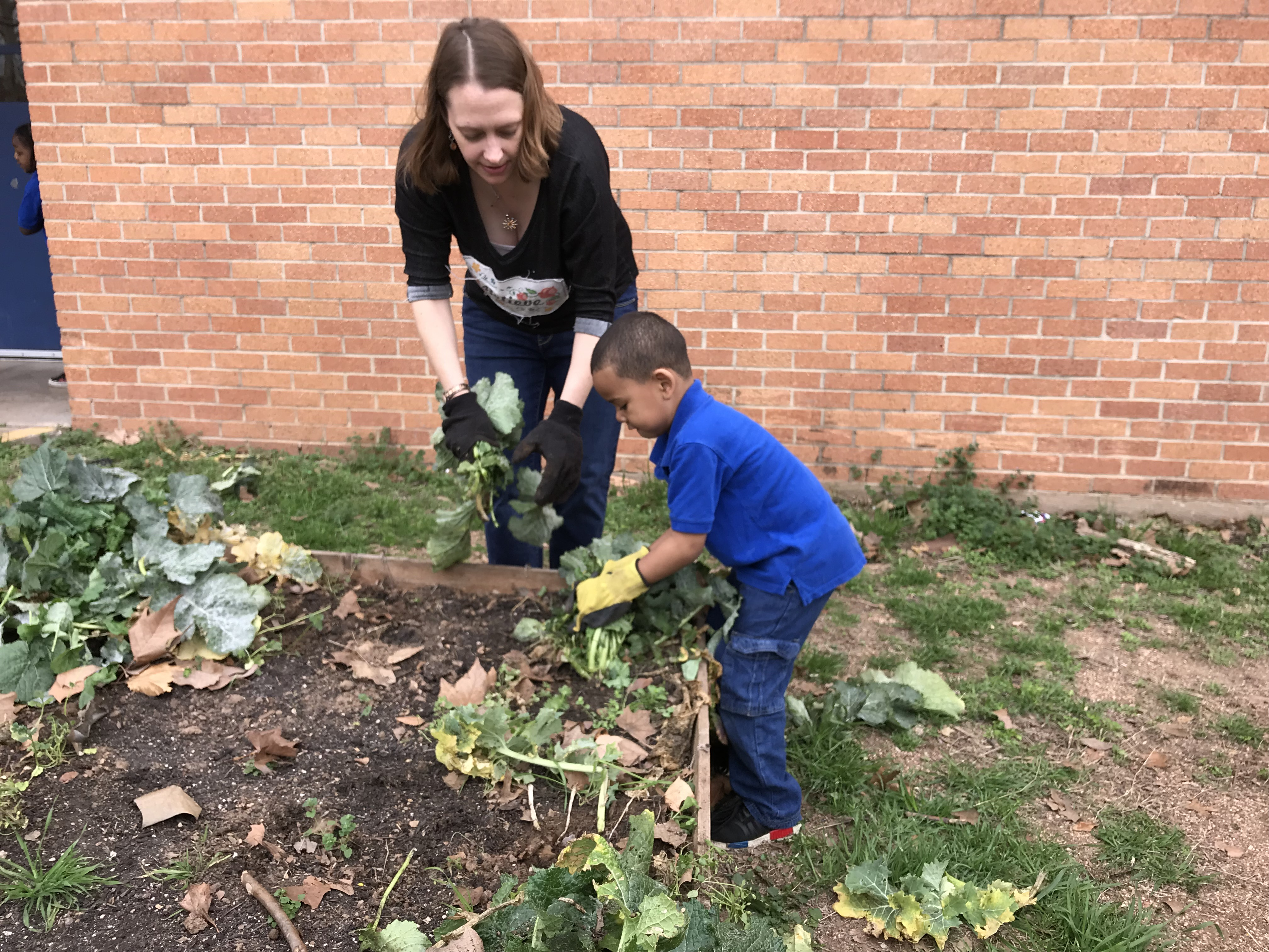 SPROUTS PreK  3 Year Old Program At Brooke Elementary
