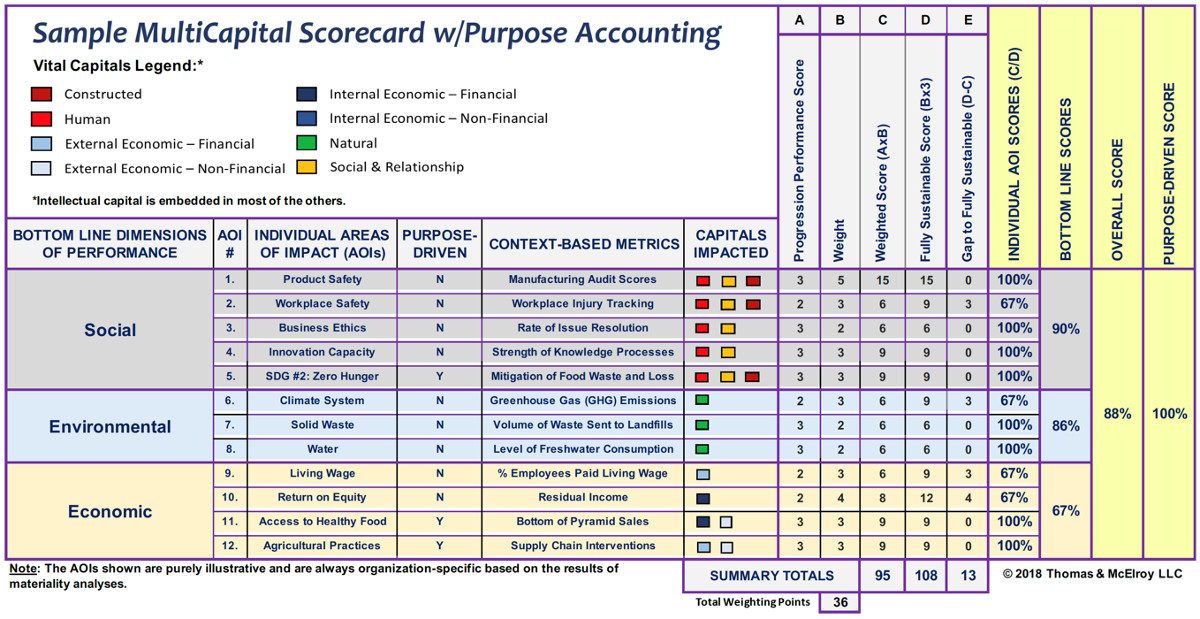 Sample MultiCapital Scorecard