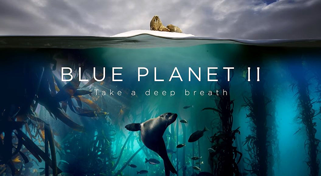 SB Oceans: Can Better Business Save Our Seas?