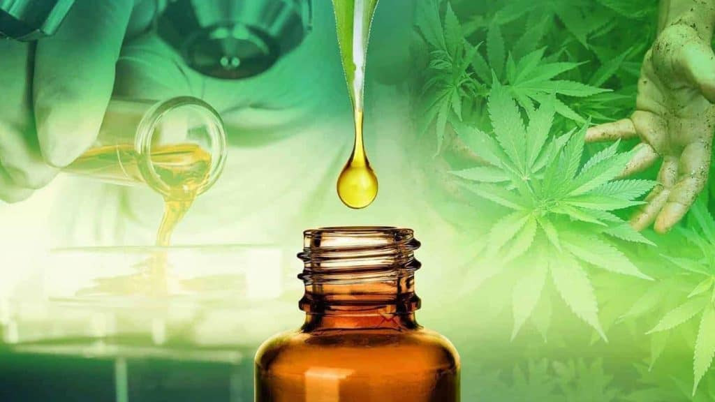 Attorney General Ken Paxton asked by Rep. Terry Canales, D-Edinburg, to rule on legality of CBD oil, an extract of marijuana, used for health benefits - Titans of the Texas Legislature