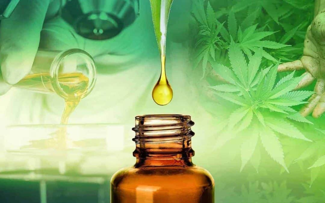 Attorney General Ken Paxton asked by Rep. Terry Canales, D-Edinburg, to rule on legality of CBD oil, an extract of marijuana, used for health benefits