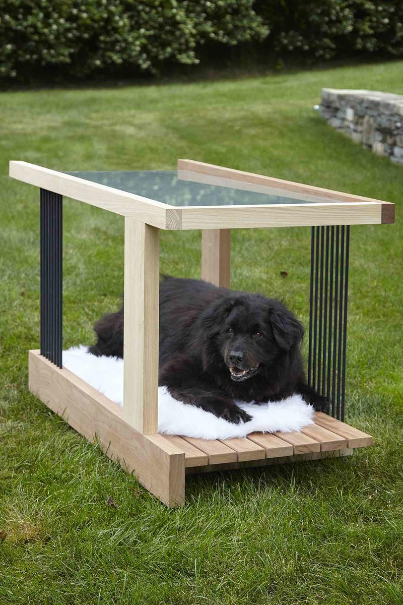 Hamptons architects build houses fit for dogs