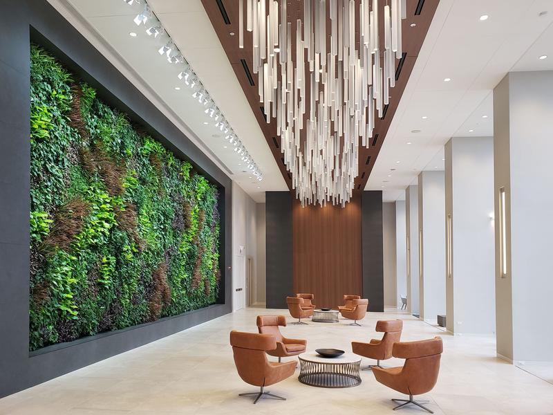 A living wall from Sagegreenlife