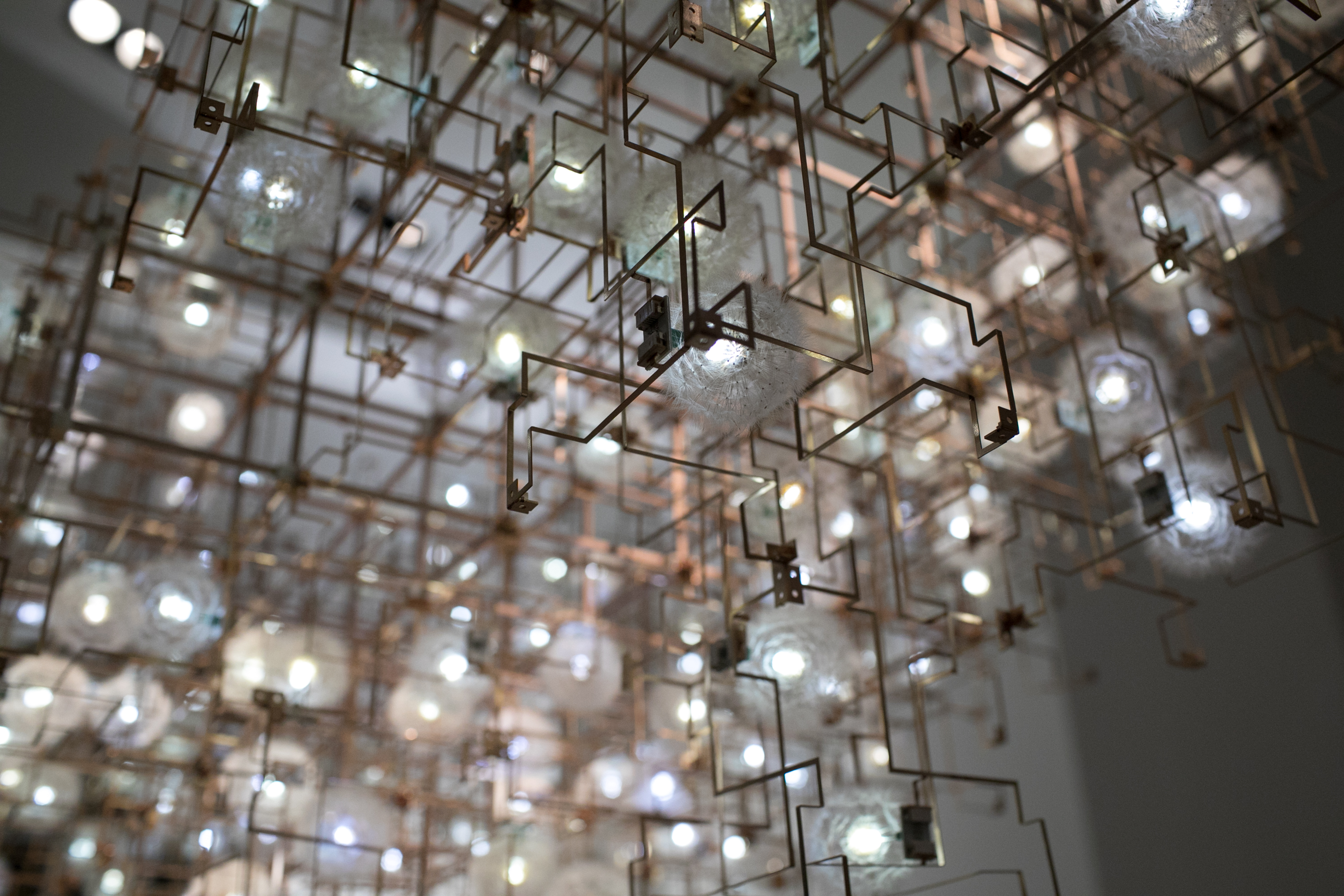 A close-up shot of Studio Drift's 'Fragile Future' fixture