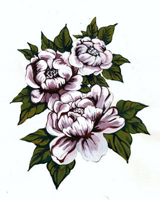 Watercolor of peonies for Pardus Toile Wallpaper